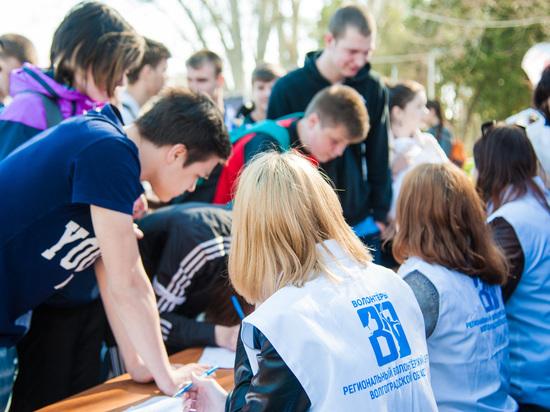 40 волгоградских предприятий заманивают студентов горячими вакансиями