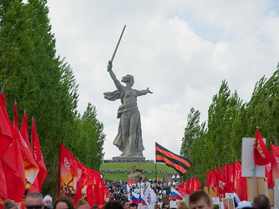Руководитель штаба Навального подозревается восквернении монумента «Родина-мать»