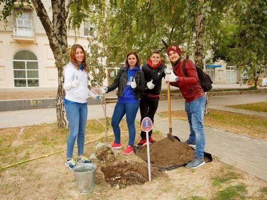 Волонтеры ЧМ-2018 высадили в Волгограде кленовую аллею