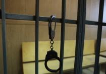 В Подмосковье задержан педофил, выкладывавший в интернет интимные снимки подростков