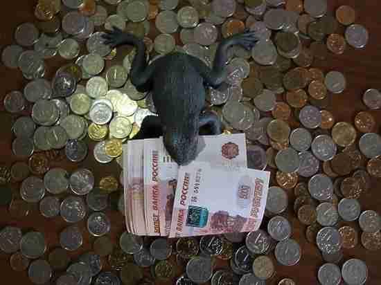 Зарплаты волгоградцев уходят в тень