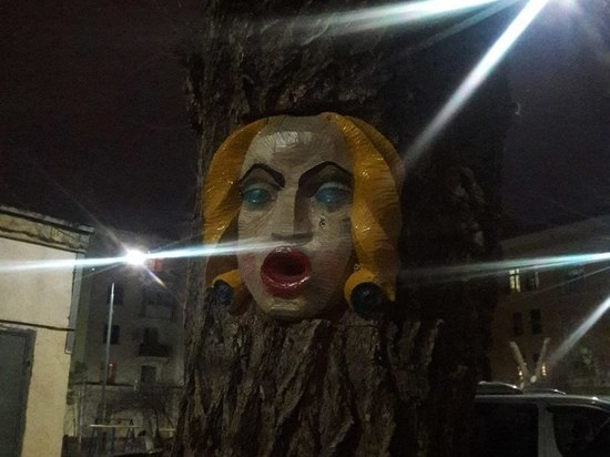 В центре Волгограда на дереве обнаружили женское лицо