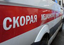Трагедия в Химках: от отравления газом умерли кот и глава семьи, жена и ребенок - в реанимации