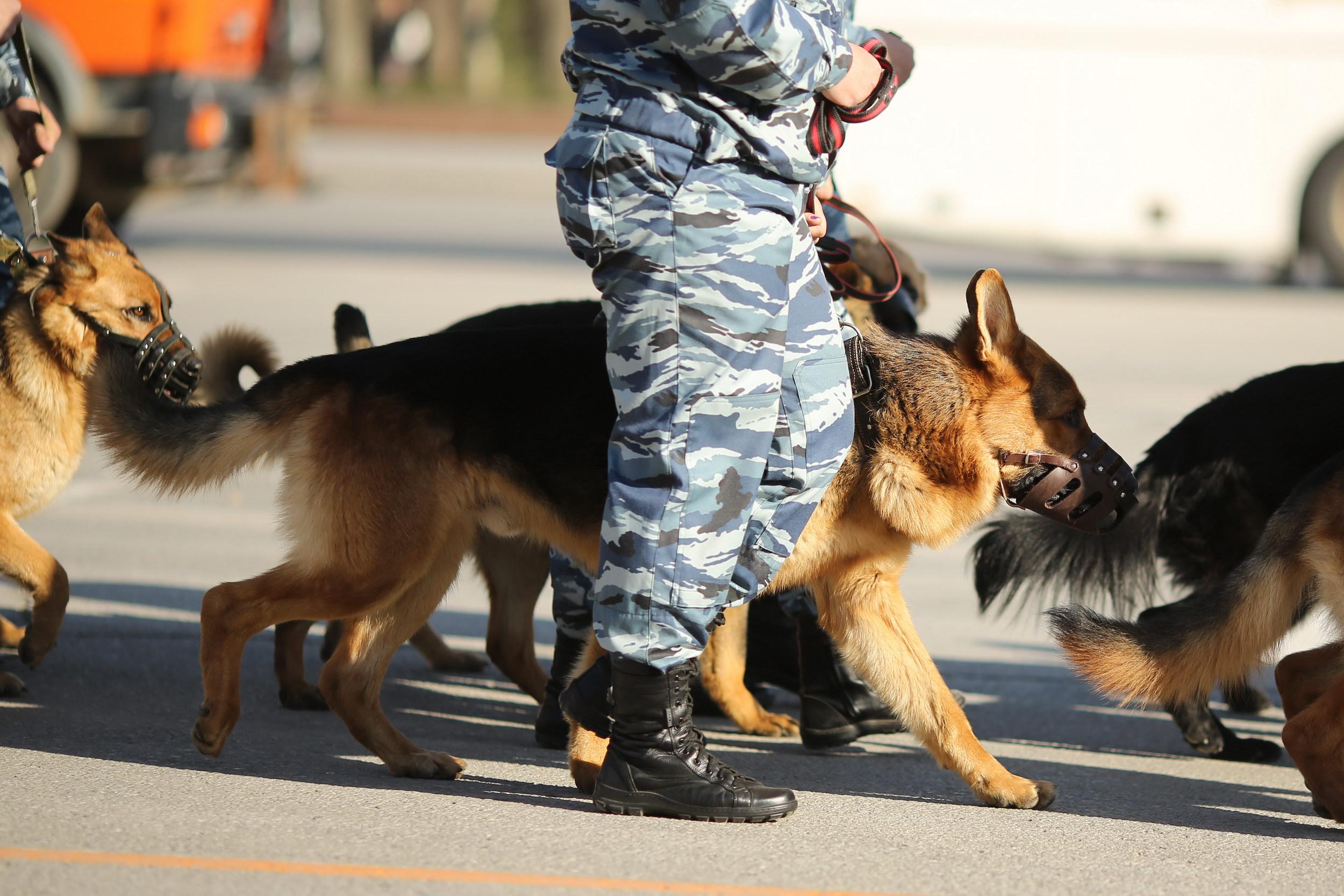 ИзВолгоградского арбитражного суда эвакуируют людей— свидетели