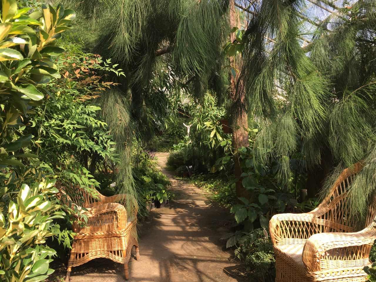 Изюминкой осенних экскурсий вВолгоградском ботаническом саду станут водопад иводные растения