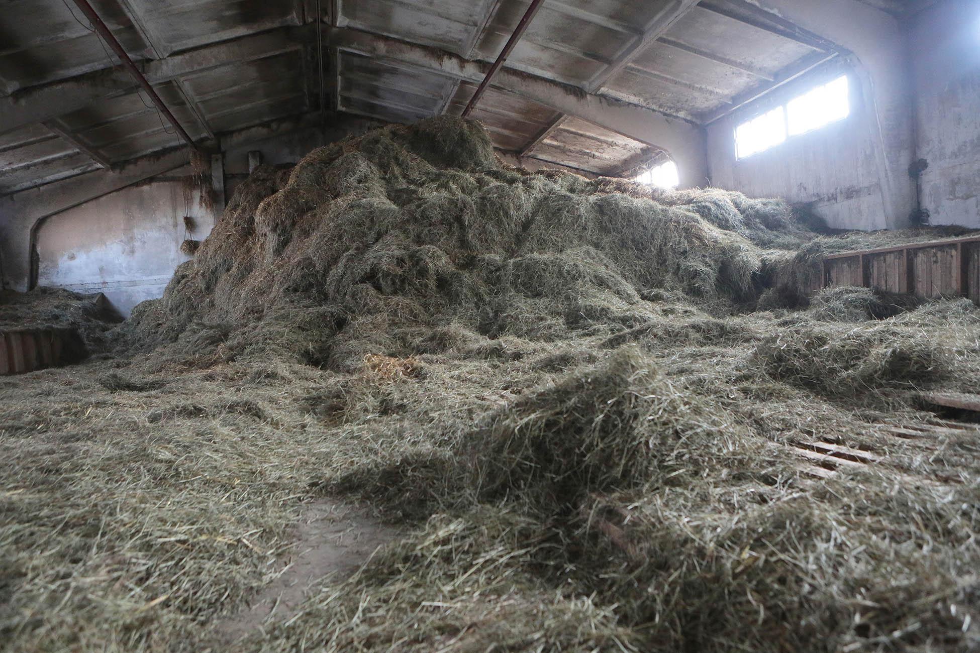 27-летний гражданин Волгоградской области изчувства мести поджог сено отца