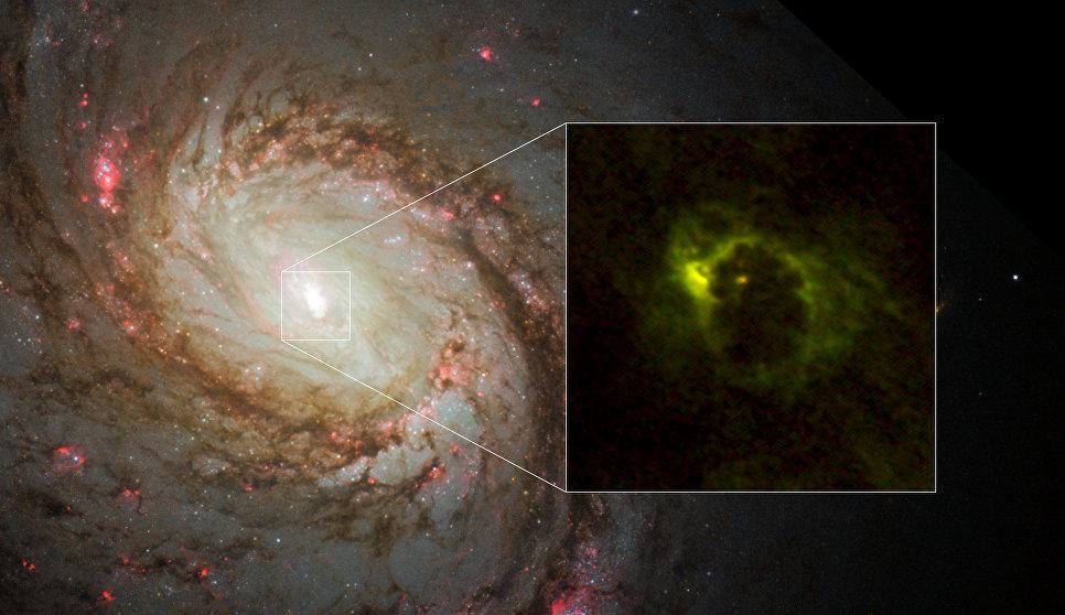 Ученые впервый раз получили снимок «бублика» вокруг черной дыры