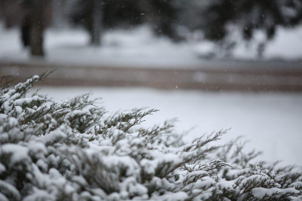 НаКрещение вВолгограде прогнозируют небольшое потепление