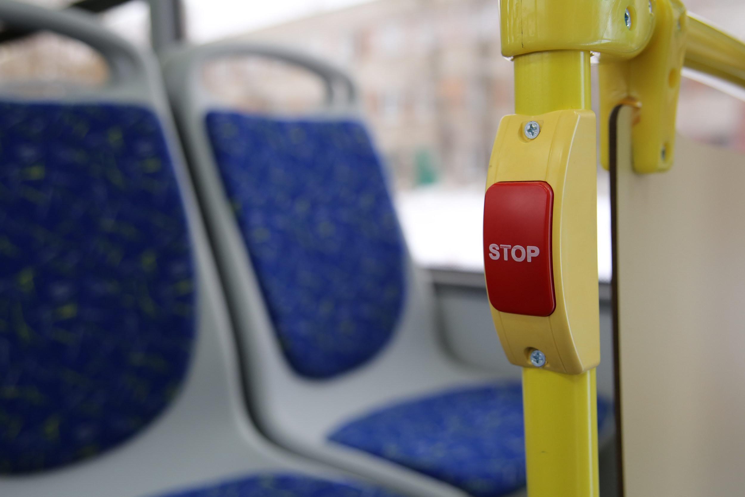 модели автобусов фотография лиза г оренбург